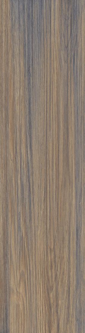 Pinus Palet